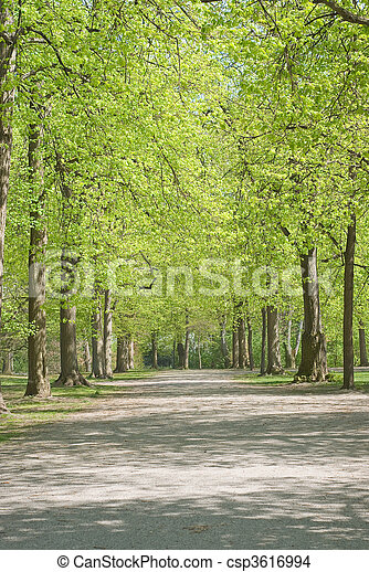 Walkway Through Spring Scenery - csp3616994