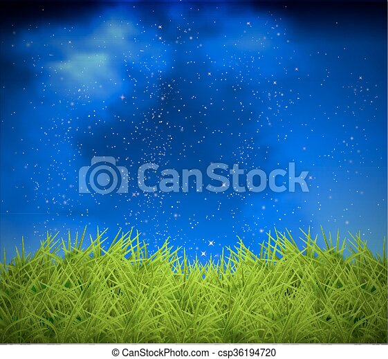 grass on a background of night sky - csp36194720