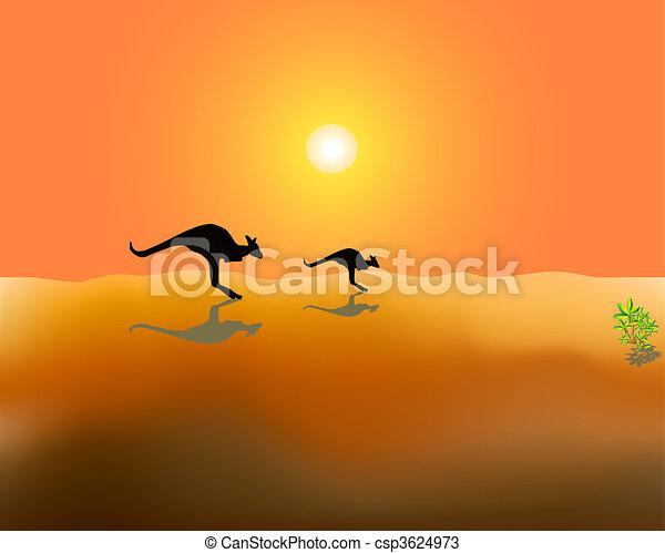 kangaroos - csp3624973
