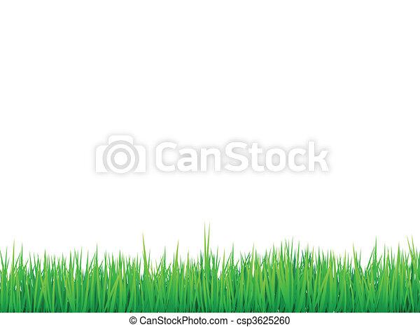 grass borders background - csp3625260
