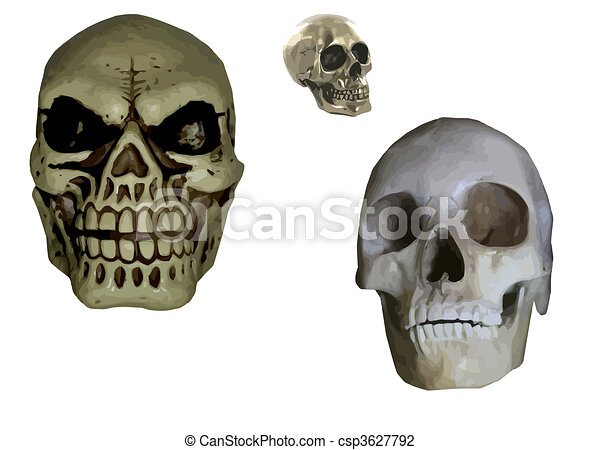 set of 3 skulls - csp3627792