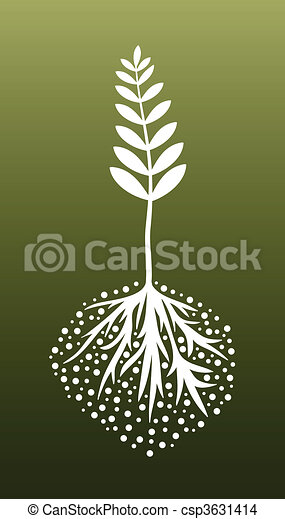 Plant and Roots - csp3631414