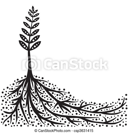 Plant and Roots Background - csp3631415