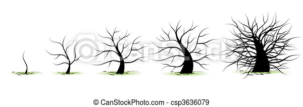 Life stages of tree: childhood, adolescence, youth, adulthood, old age - csp3636079