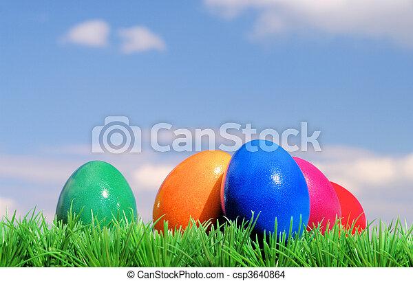 Ostereier auf Blumenwiese mit Himmel - easter eggs on flower meadow and sky 02 - csp3640864