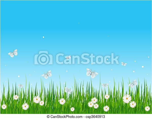 Grassy field and butterflies - csp3640913