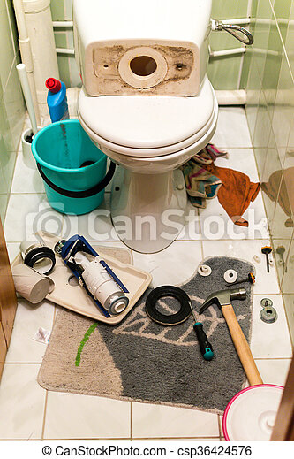 Home interior toilet repairs shows work in progress. Plumbers tools displayed around the components of the toilets flush system including a float device and gaskets. White porcelain toilet and cluttered tools background. Nobody in the DIY scene.