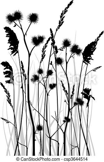 Grass silhouette - csp3644514