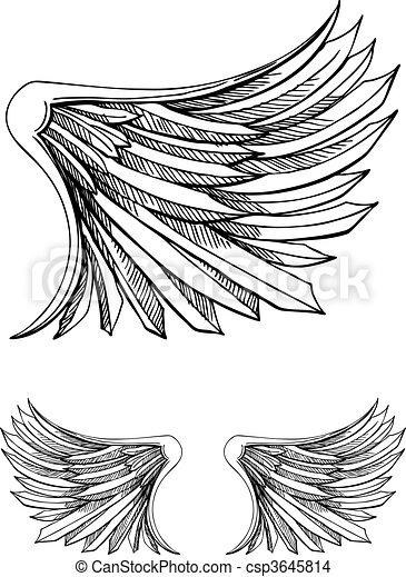 EPS Vector of Bird Wing csp3645814 - Search Clip Art, Illustration ...