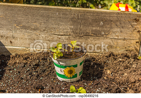 Stock Photography Of Frau Bei Gartenarbeit. Frühling, Garten ... Die Gartenarbeit Im Fruhling