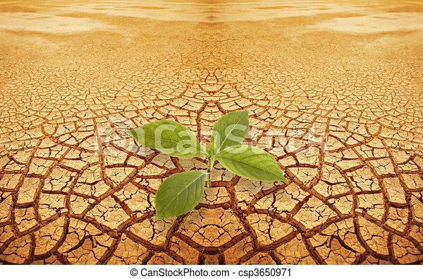 Clipart von pflanzenkeim zweig droughty boden sprout for Boden clipart