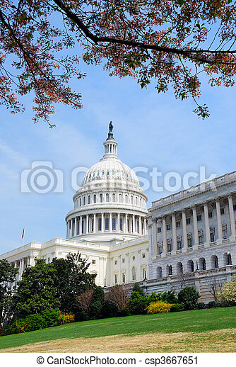 政府, 華盛頓, 建築物, dc - csp3667651