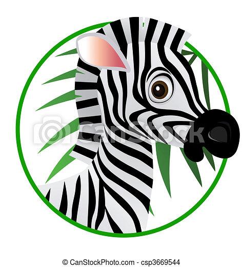 Zebra Cartoon - csp3669544
