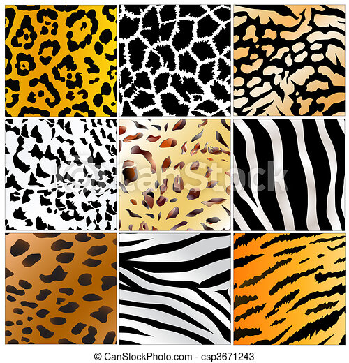 wild animals skin patterns - csp3671243