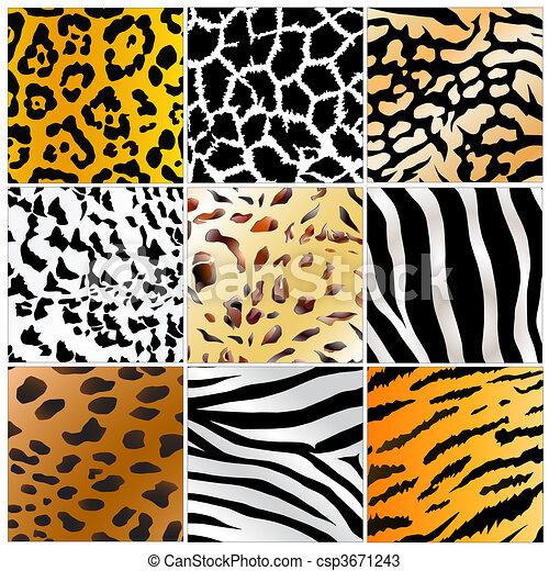 wild animals skin patterns - csp3671243
