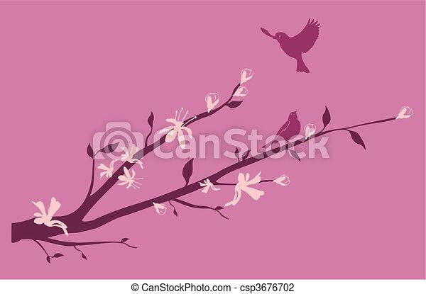 Birds on an Oriental cherry branch - csp3676702