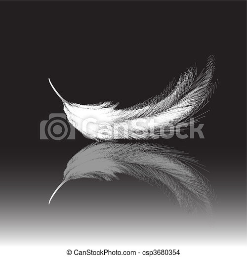 Feather - csp3680354