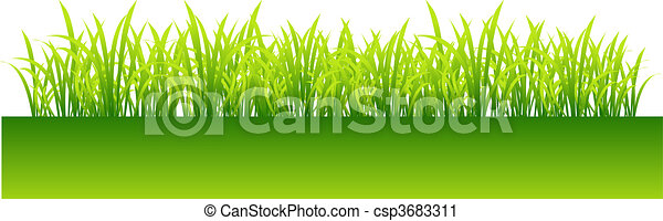 Spring, green grass for your design - csp3683311