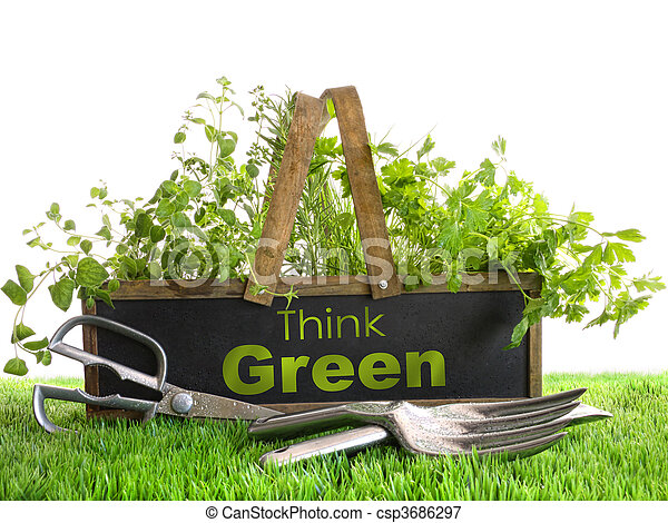 Garden box with assortment of herbs and tools - csp3686297