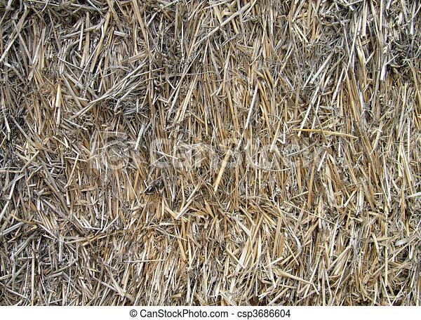 dessin de paille foin balle ou fond fond de agricole foin csp3686604 recherchez. Black Bedroom Furniture Sets. Home Design Ideas