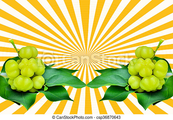 Star gooseberry and leaves on beam background
