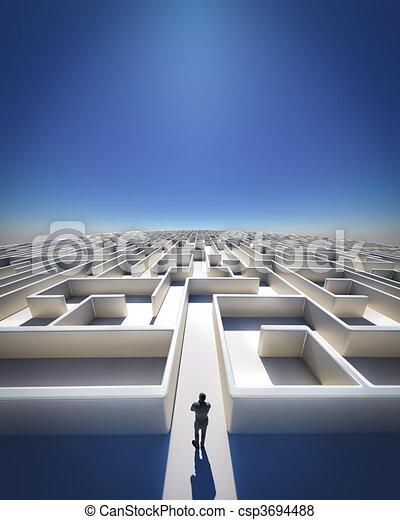 Maze to Infinity - csp3694488