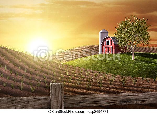 Morning on the Farm - csp3694771