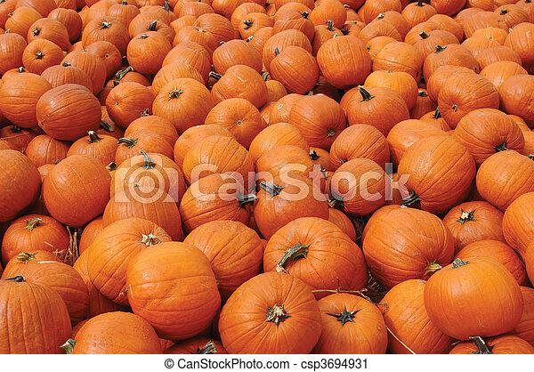 Pumpkins - csp3694931