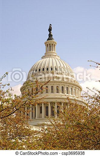 Capitol Dome - csp3695938
