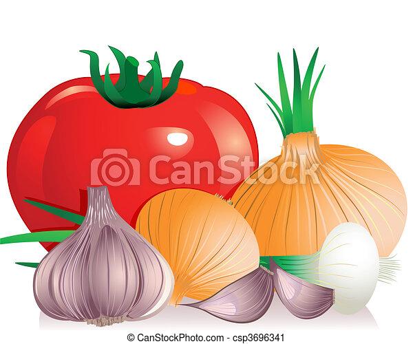 onion tomato garlic - csp3696341