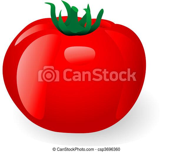 tomato - csp3696360