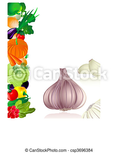 garlic - csp3696384