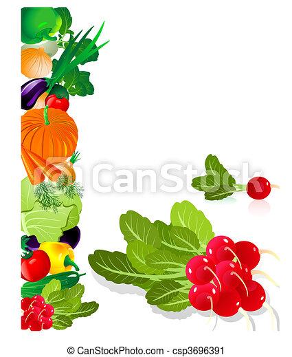 vegetables radish - csp3696391