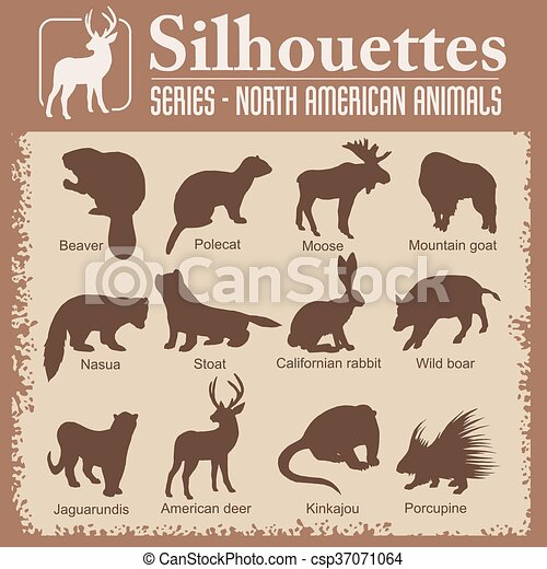 Silhouettes - North American animals. - csp37071064