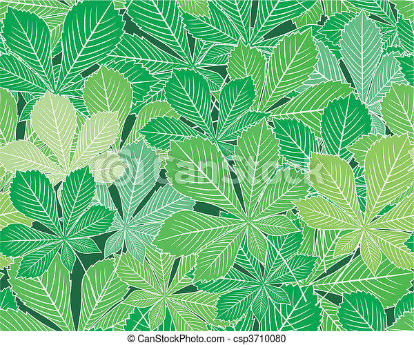 Spring horse-chestnut leaves vector - csp3710080