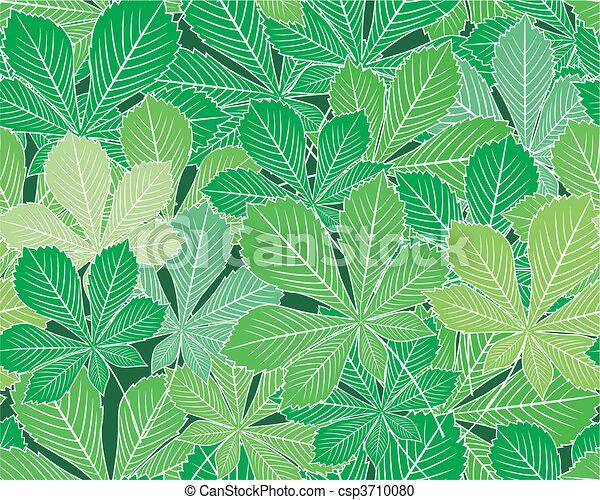 Spring horse-chestnut leaves vector - csp3710080