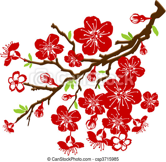 branch of the cherry blossoms - csp3715985