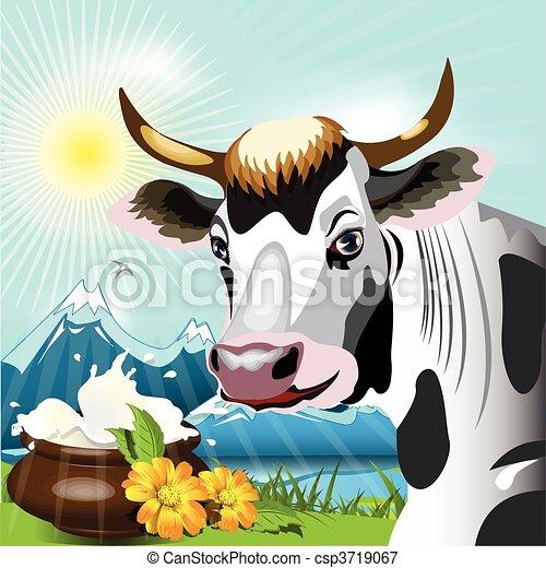 Cow  - csp3719067