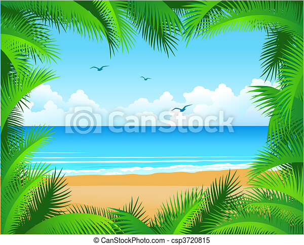 tropical beach - csp3720815