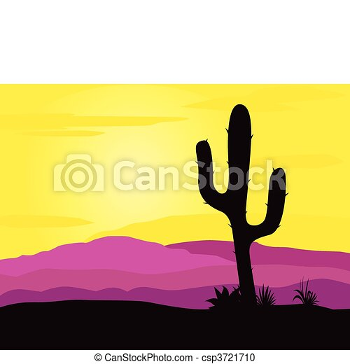 Mexico desert sunset with cactus - csp3721710