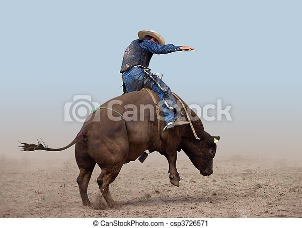 Bull Rider - csp3726571