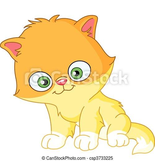 Persian kitten - csp3733225