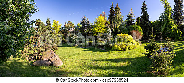 Beautiful spring garden design, with conifer trees, green grass and eneving sun. Luxury design, Gardening. Green garden in spring with blue sky