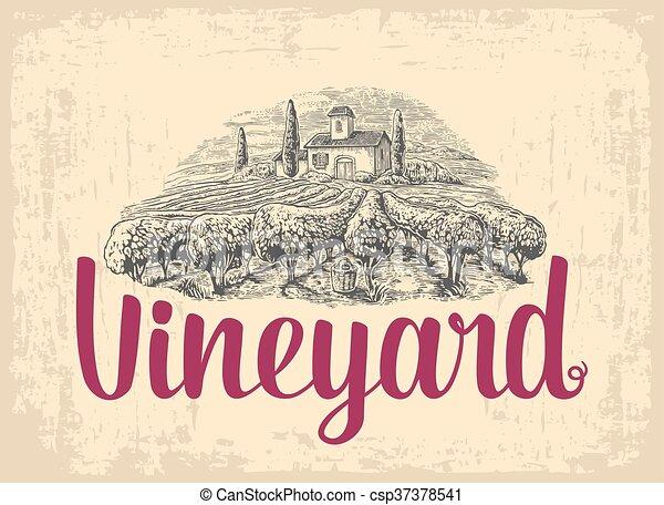 Rural landscape with villa, vineyard fields and hills. Vector engraving drawn vintage illustration. - csp37378541