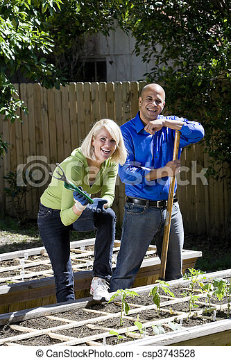 Couple working on vegetable garden in backyard - csp3743528