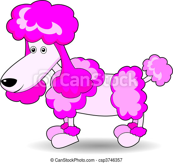 Cute Adorable Looking Poodle - csp3746357