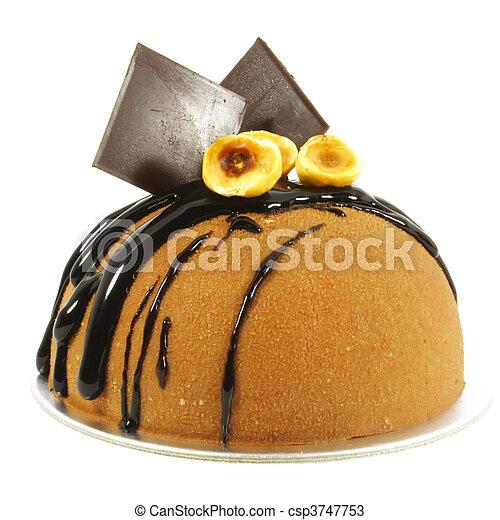 Fancy Chocolate Cake - csp3747753