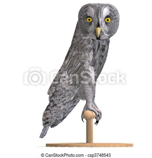 Dessins de oiseau hibou coupure sur gris rendre for Oiseau gris et blanc