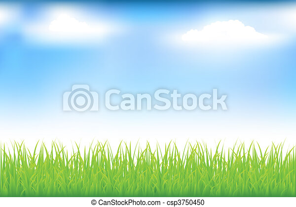 Green Grass And Blue Sky - csp3750450