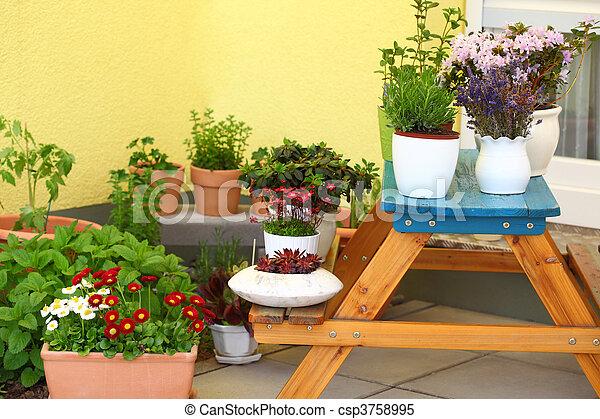Terrace or roof gardening - csp3758995